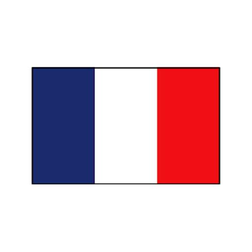 Nationalflagge Frankreich - 20 x 30cm