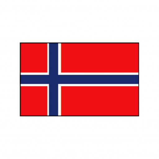 Nationalflagge Norwegen - 20 x 30cm
