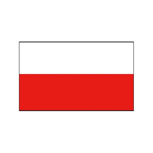 Nationalflagge Polen - 20 x 30cm