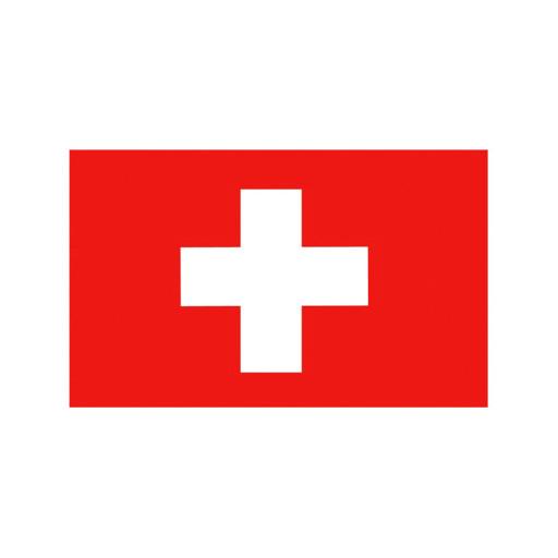 Nationalflagge Schweiz - 20 x 30cm