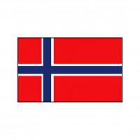 Nationalflagge Norwegen - 20 x 30cm