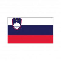 Nationalflagge Slowenien - 30 x 45cm